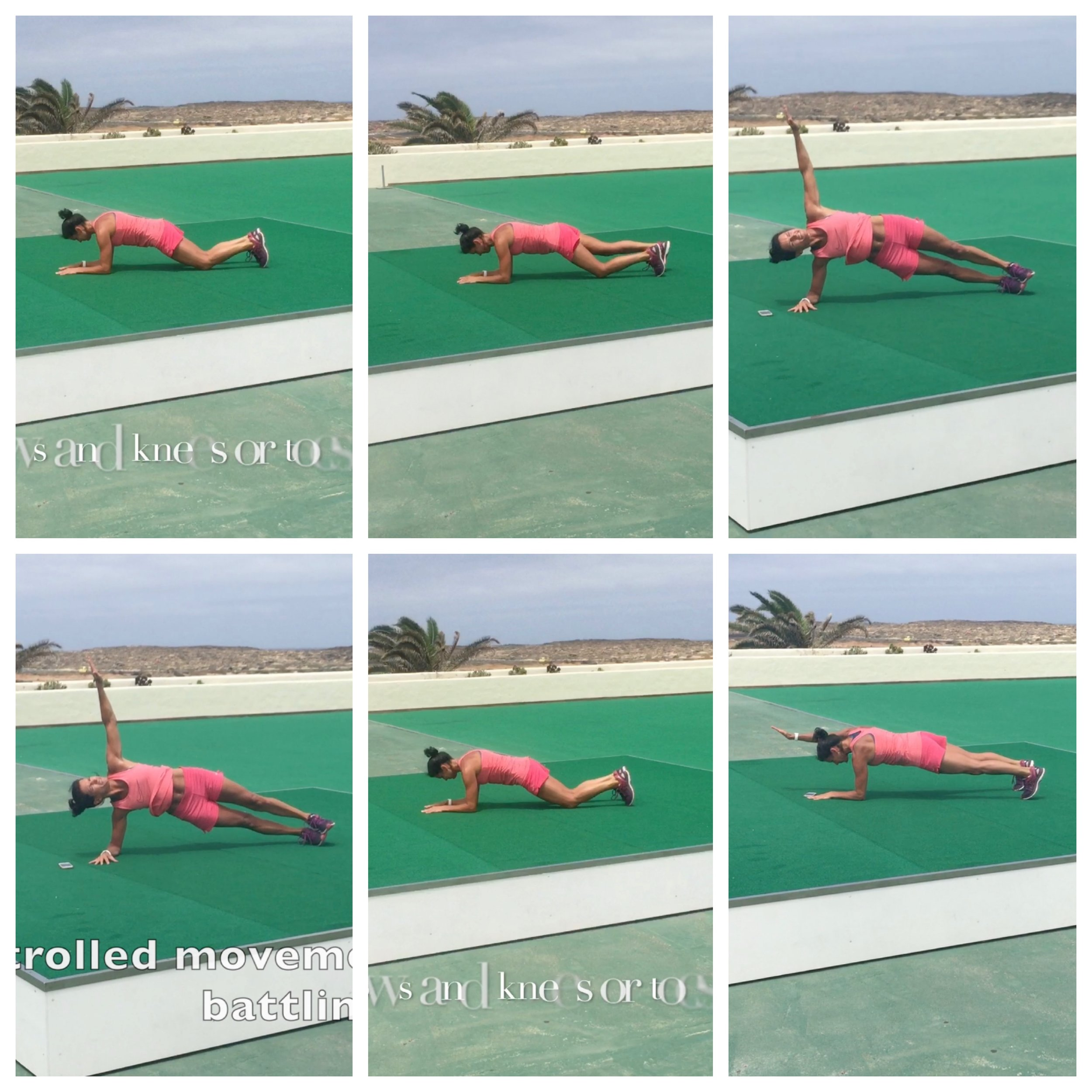 plank lanz.jpg
