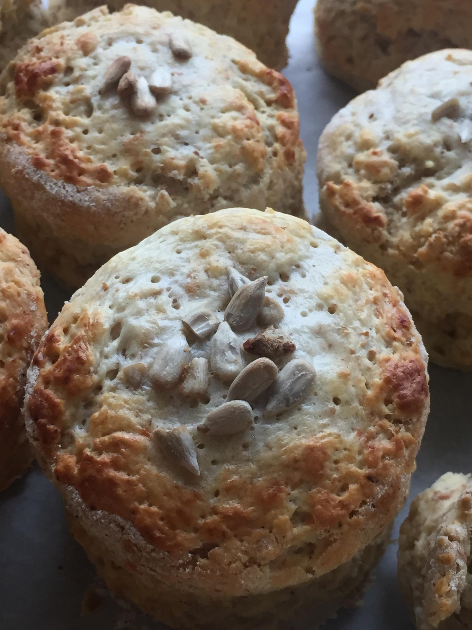 cheese scones.JPG