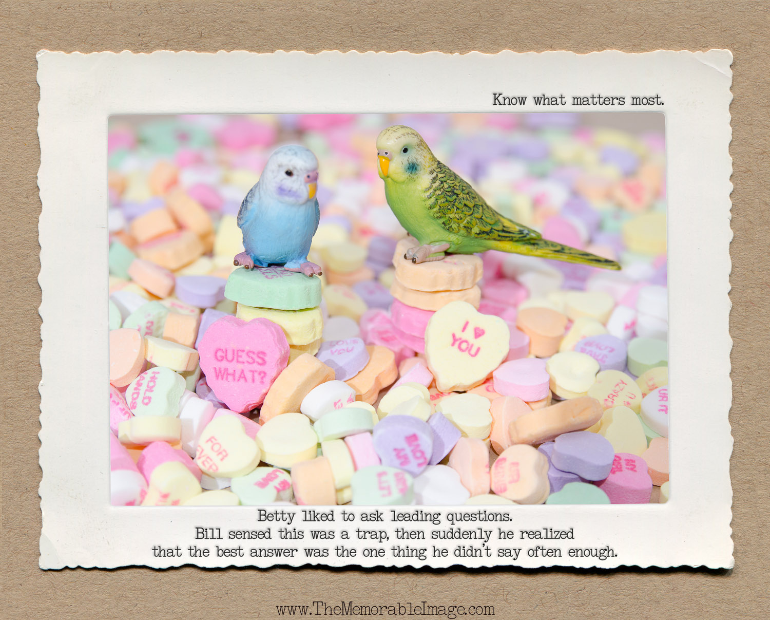 8x10_Feb_Budgie Hearts.jpg