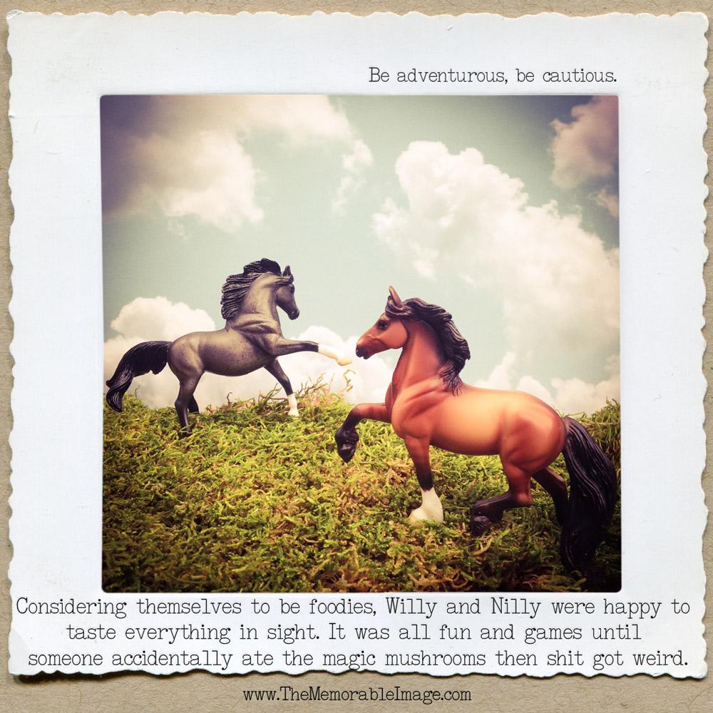 Day15_Horses.jpg