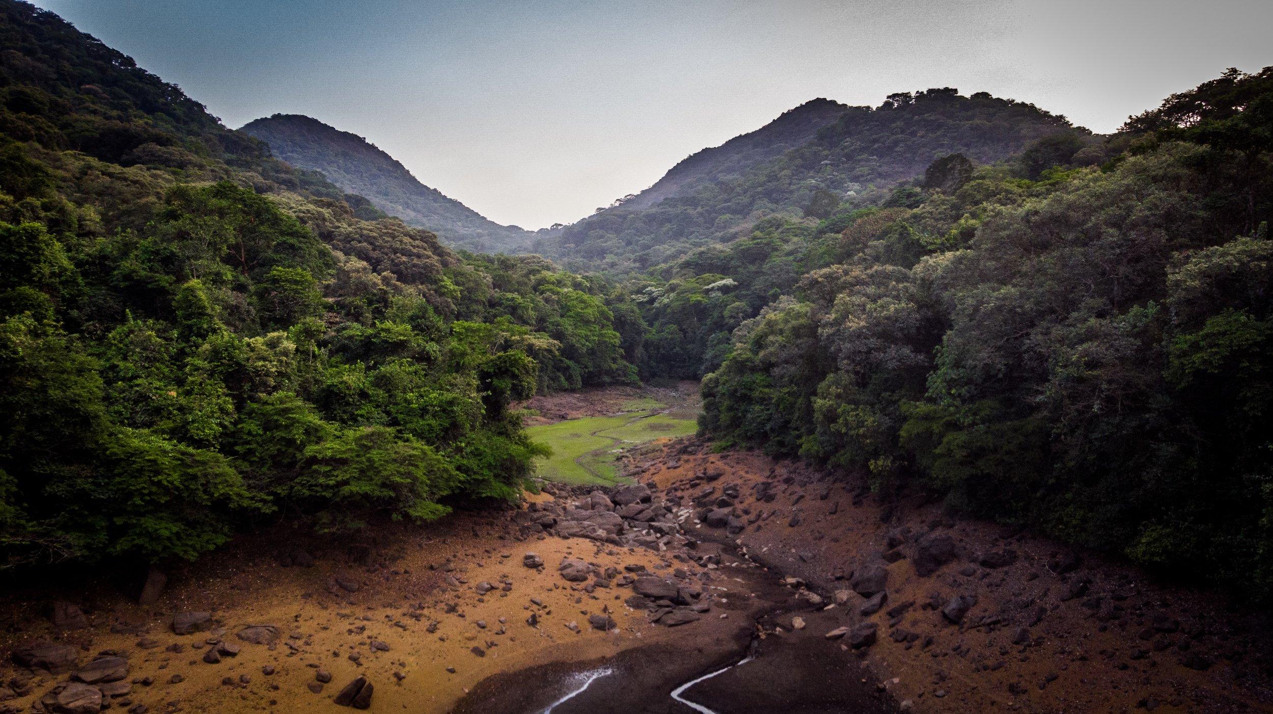 Sierraleone-vickieremoe-environment-rainforest-conservation-photos-radwanskeiky5.JPG