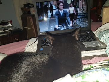 Jovi enjoying Call the Midwife