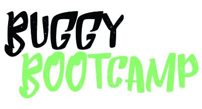 logo_buggy.jpg