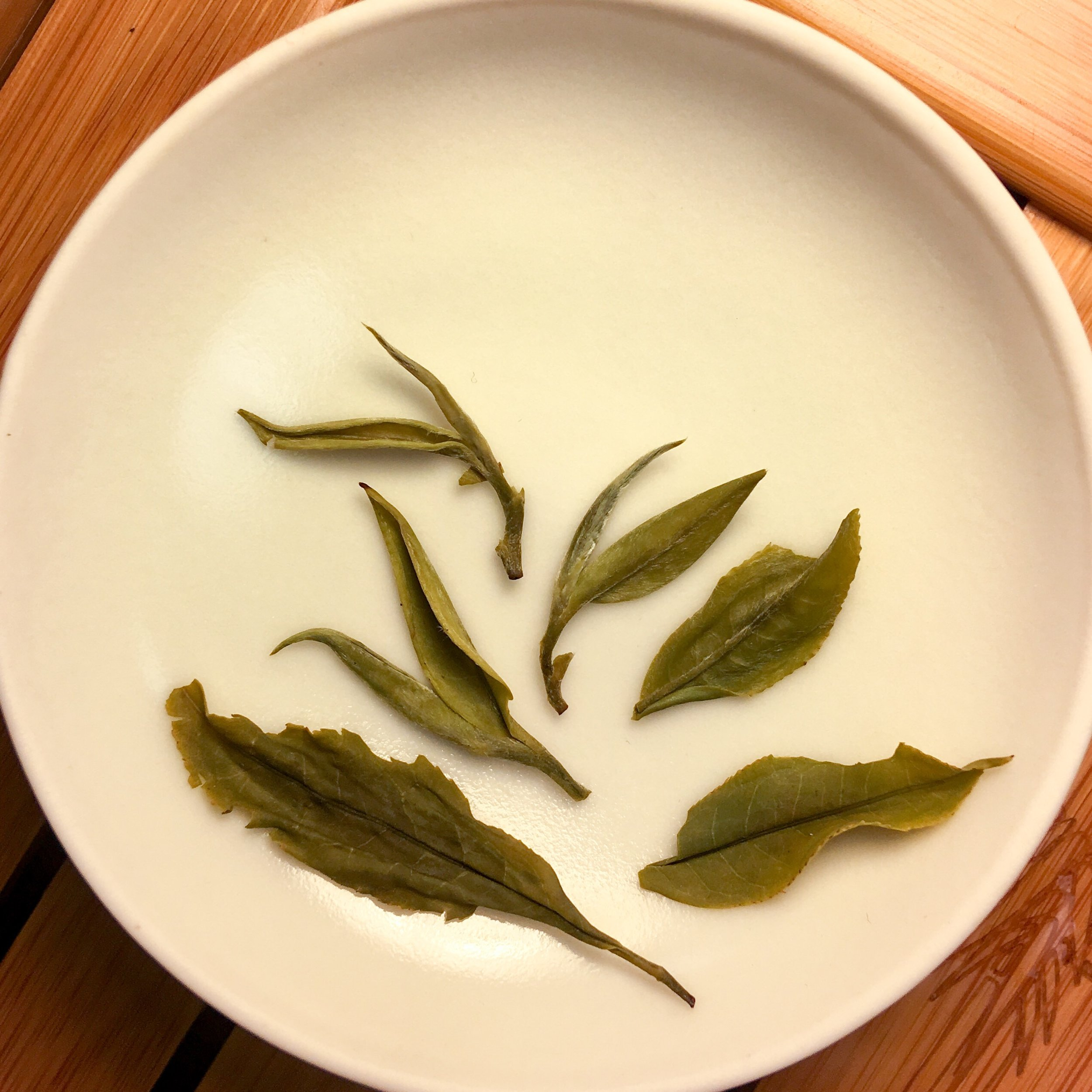 jade-spring-white-tea-nepal-nepalese-whole-leaf-loose-tea-itw2-2019a.JPEG