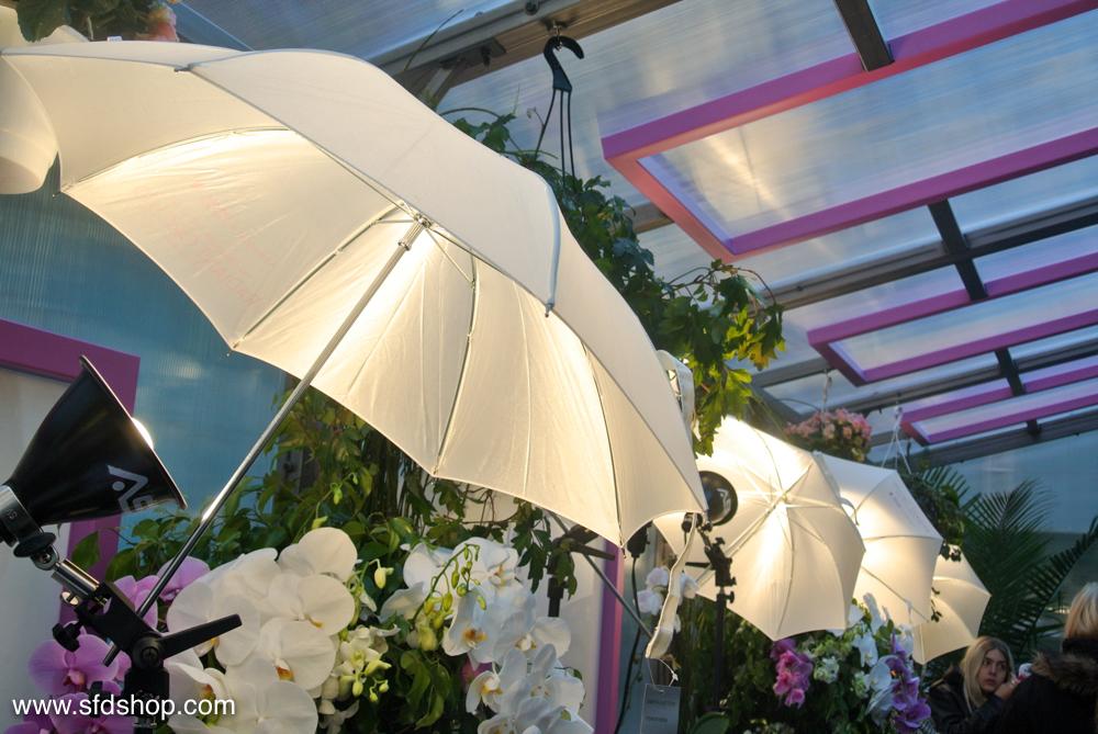 Sephora Pantone Greenhouse fabricated by SFDS 9.jpg