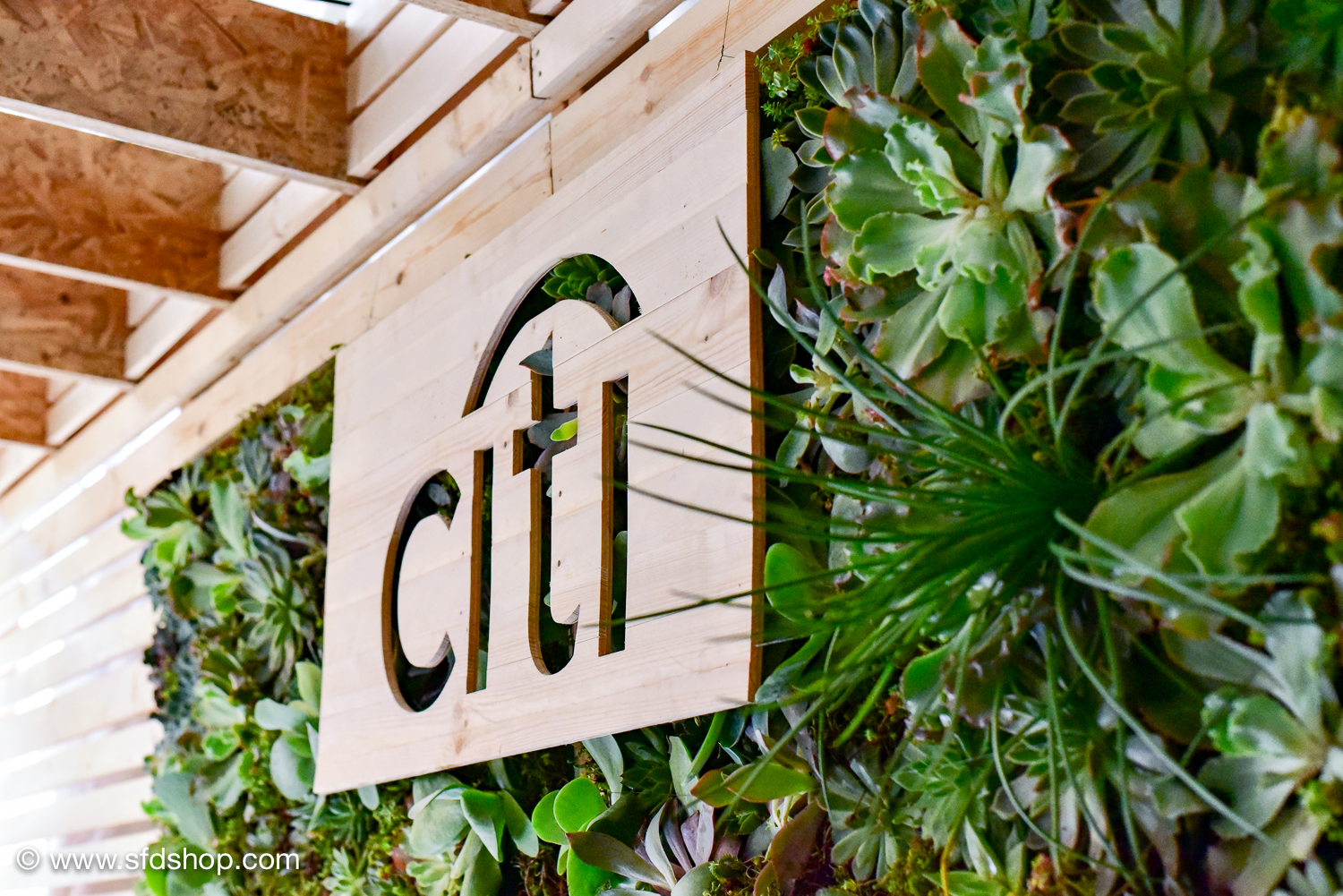 Citi Global Citizen Festival fabricated by SFDS-17.jpg