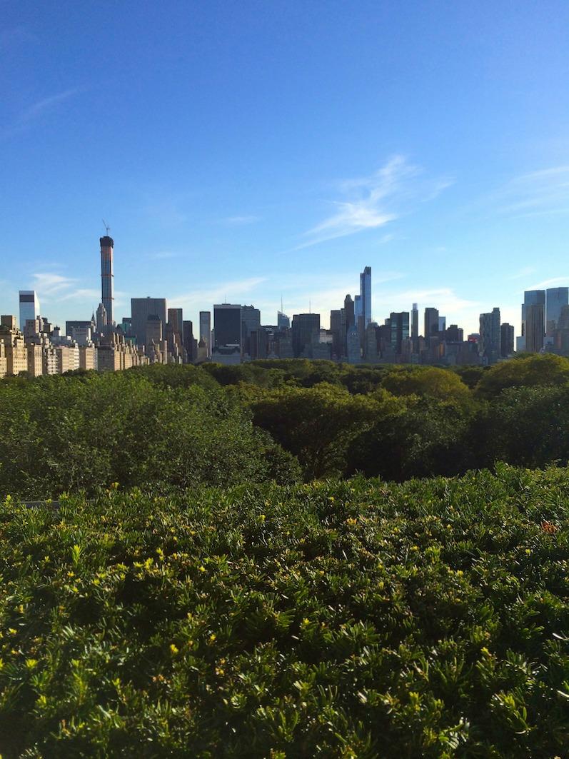 Met-rooftop-view.jpg