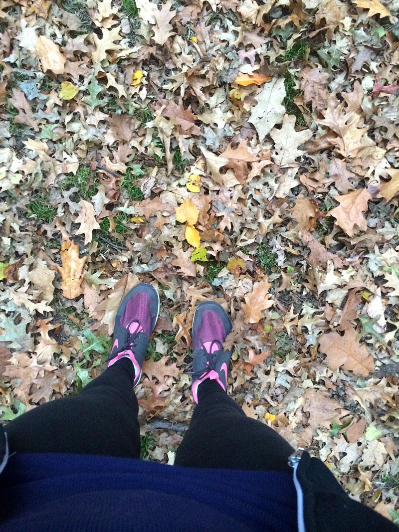 walk-in-the-leaves.jpg