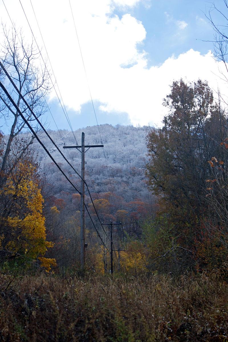 fall-fading-into-winter.jpg