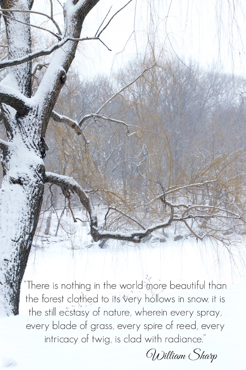 quotes-about-snow.jpg