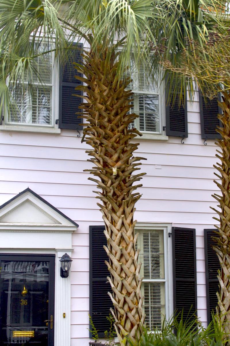 Charleston-home.jpg