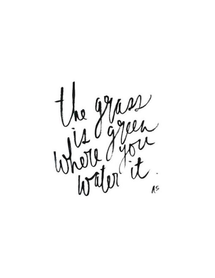 The-grass-is-greener-where-you-water-it.jpg