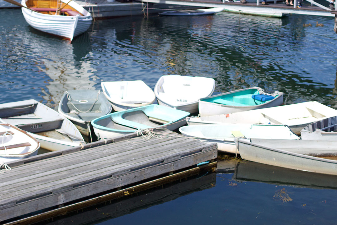boats-tied-up-in-Maine.jpg