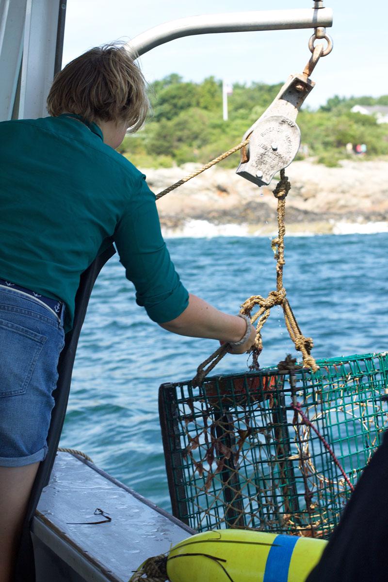 lobster-fishing.jpg