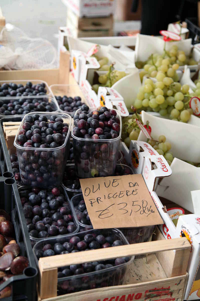 fresh-olives-in-Italy.jpg