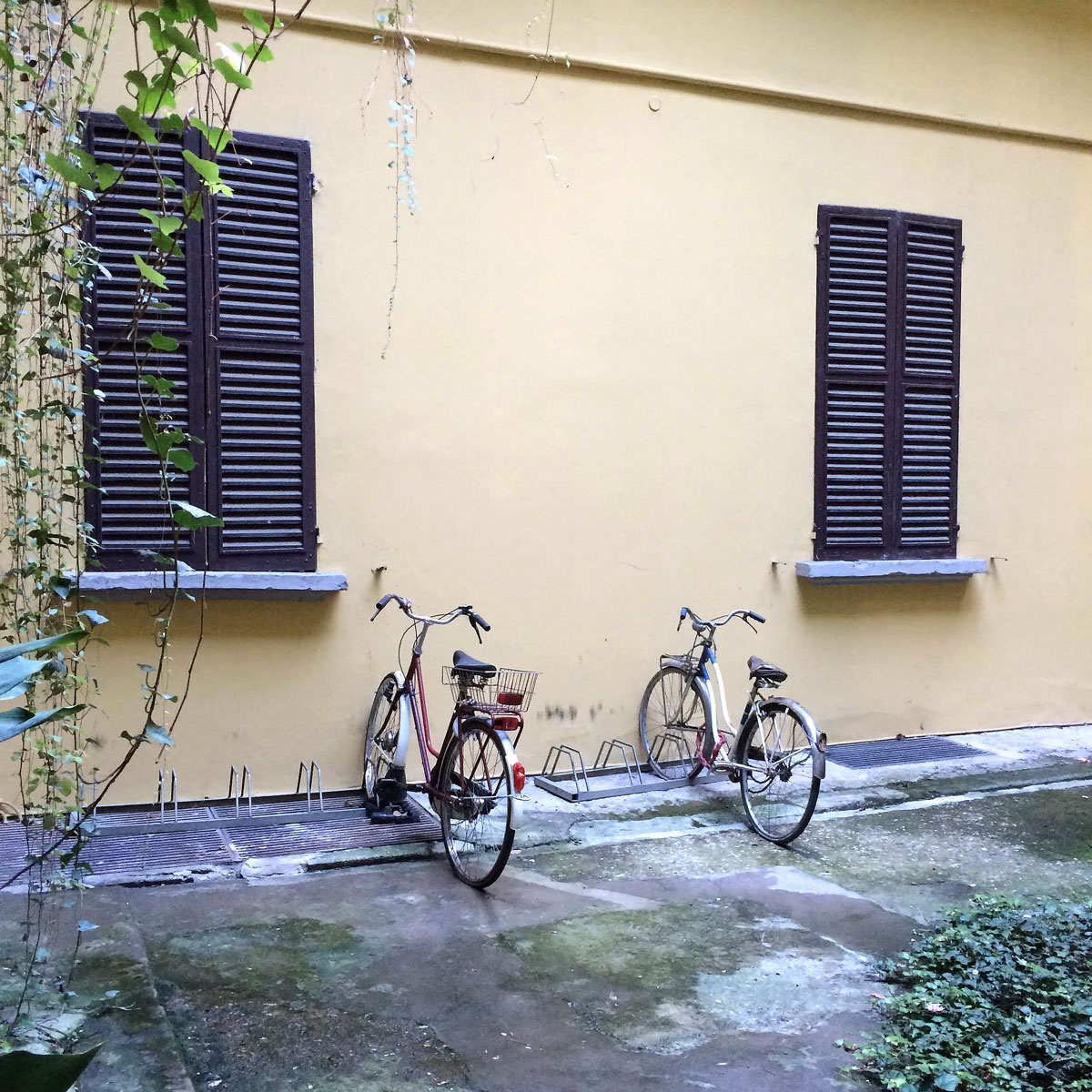 bikes-in-Bologna.jpg