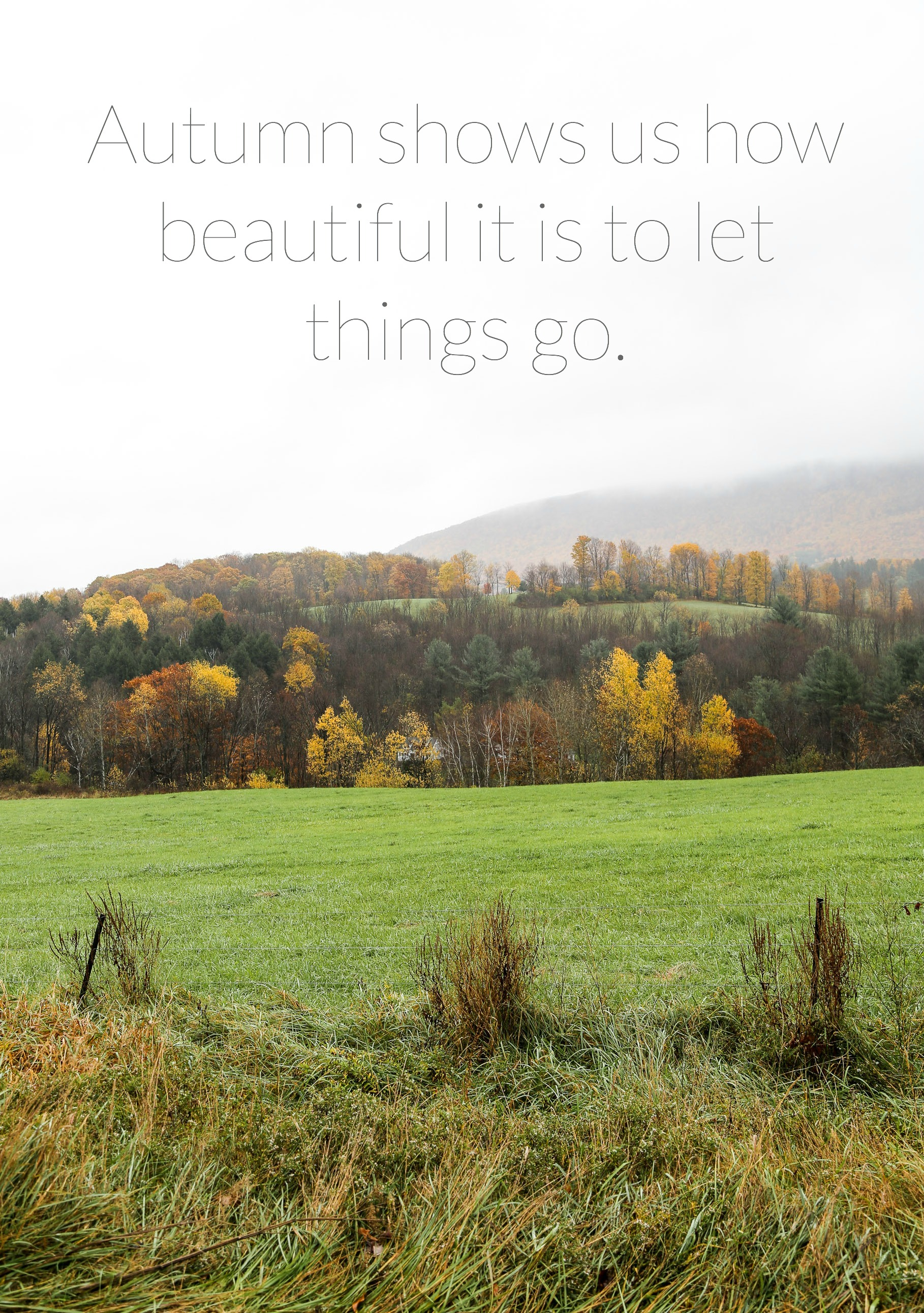 quotes-about-fall.jpeg