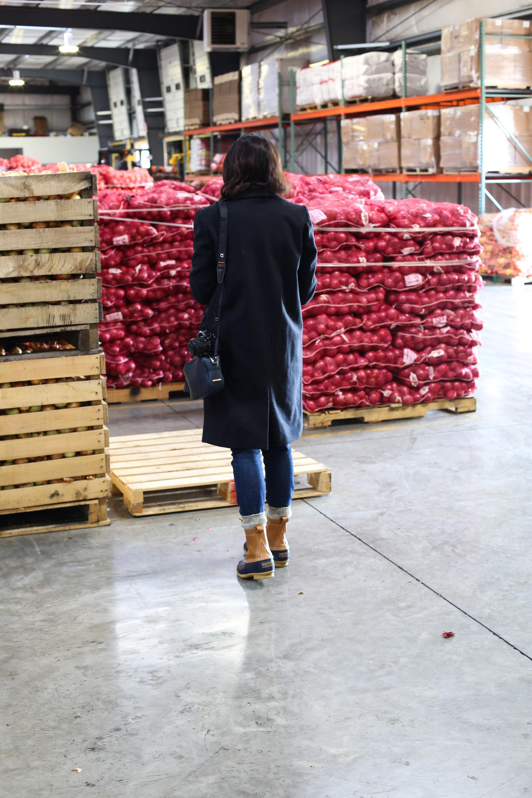 Minkus-Family-Onion-Farm10.jpg