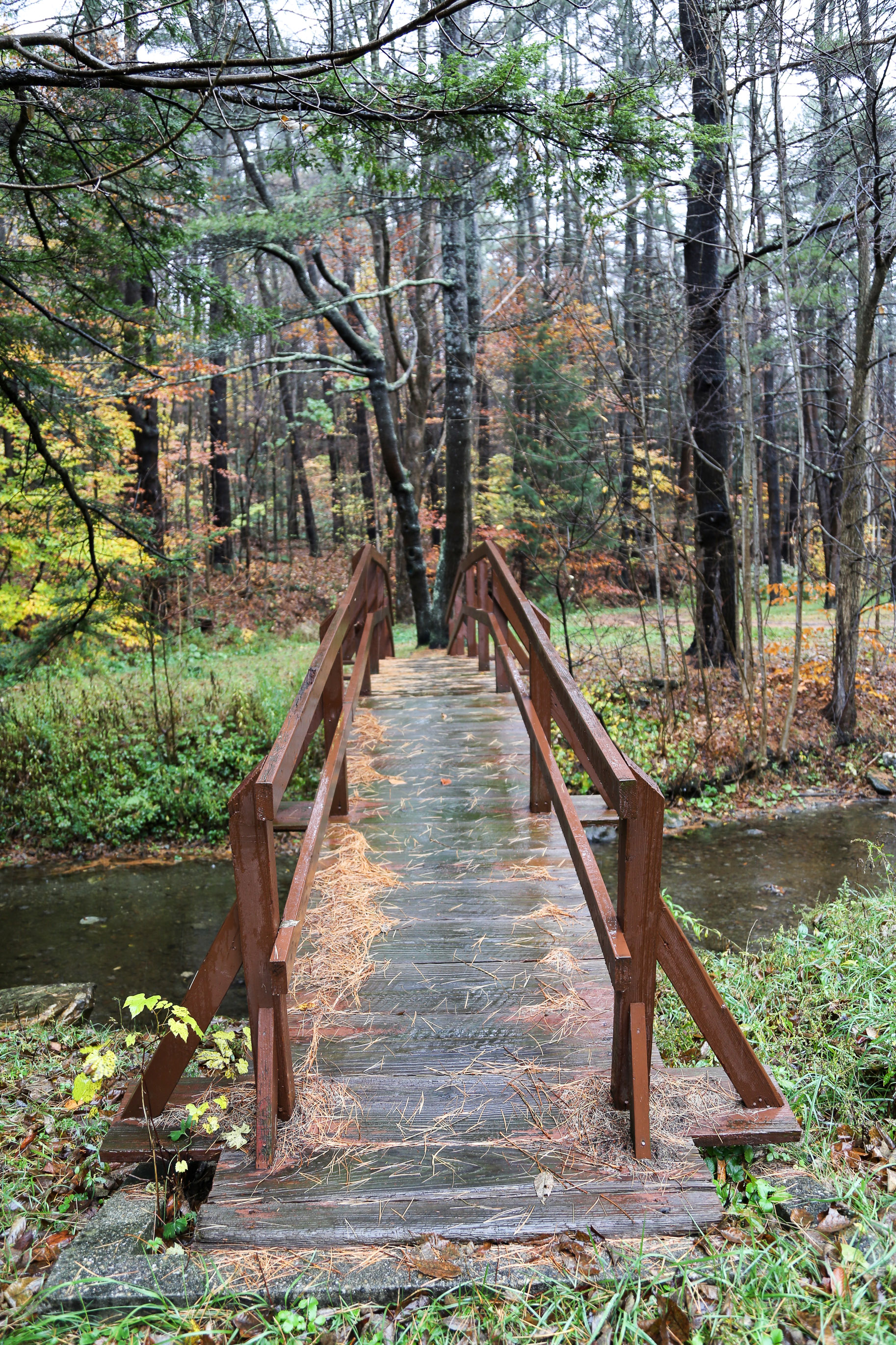 New-England-in-the-fall-2.jpg