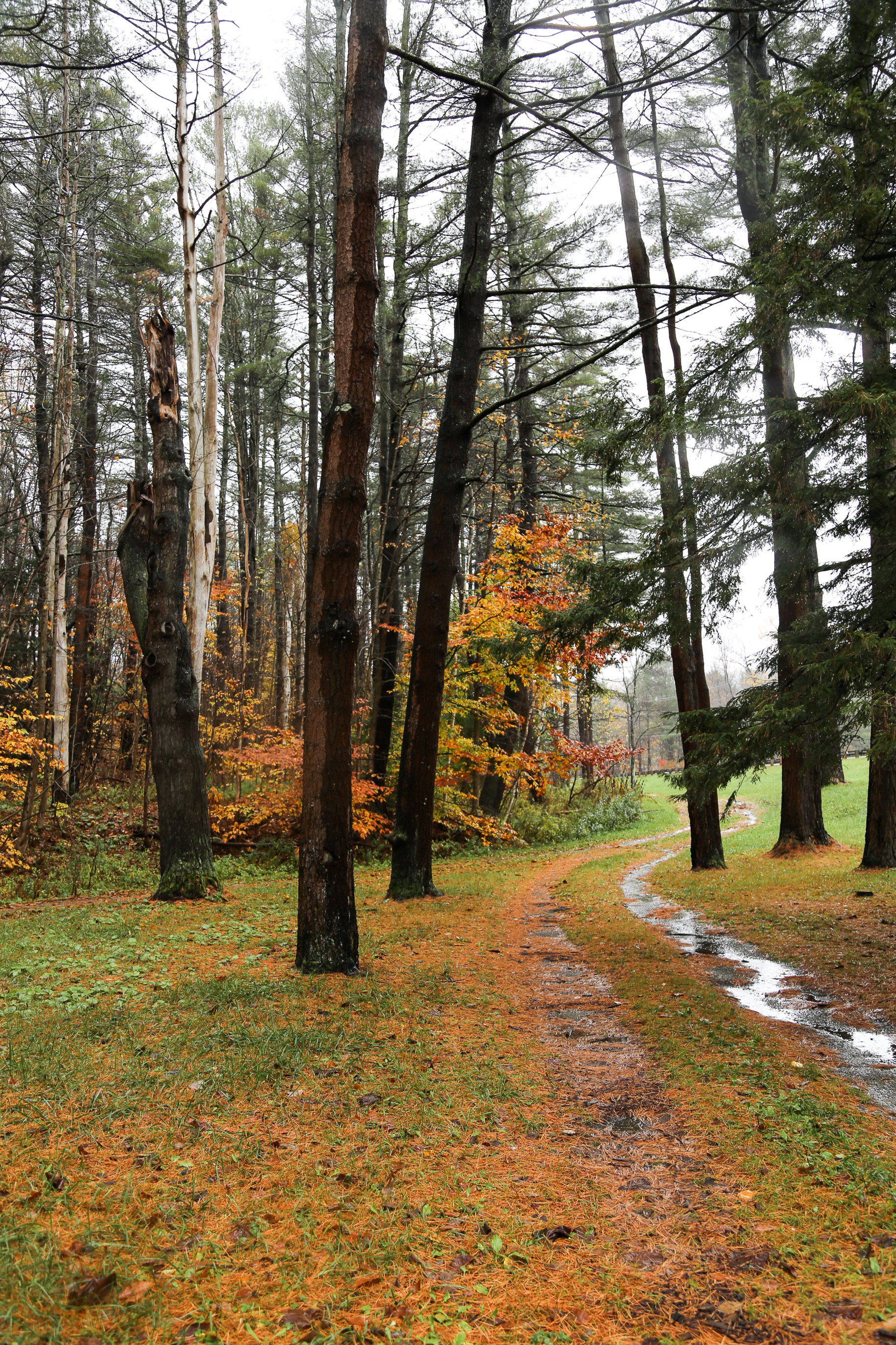 New-England-in-the-fall-3.jpg