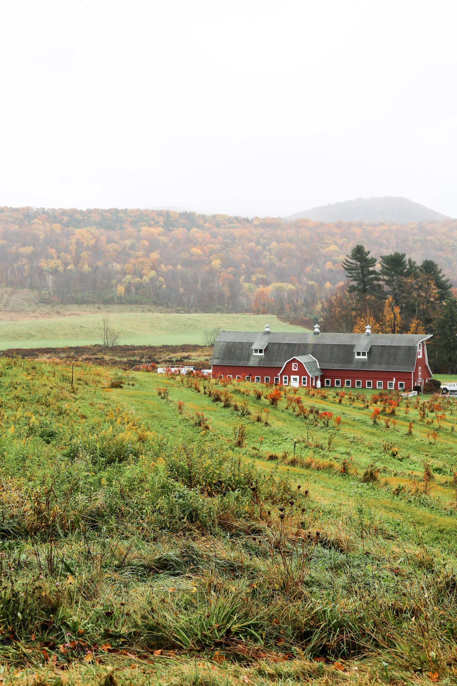 New-England-in-the-fall.jpg