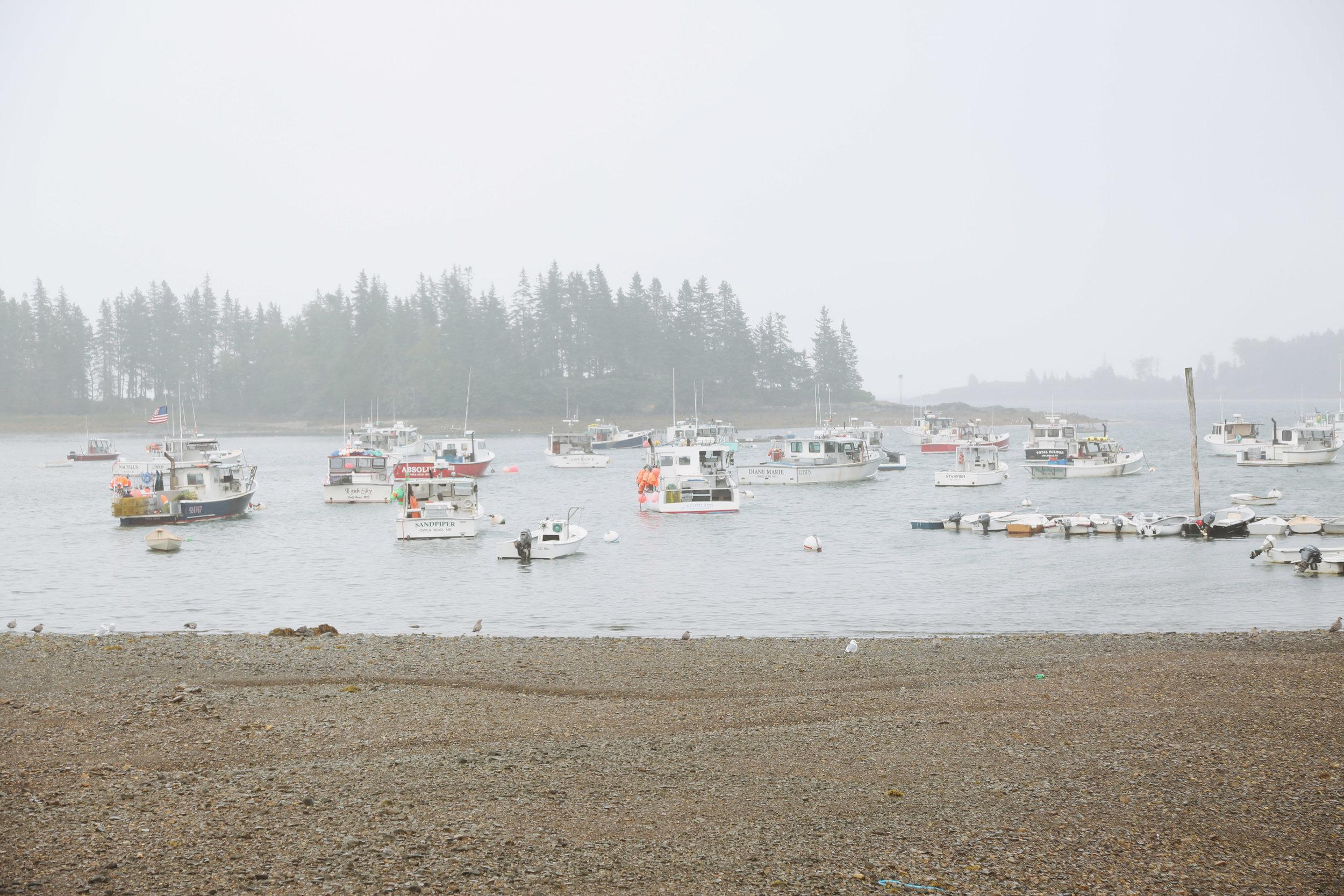 mid coast maine guide-5.jpg
