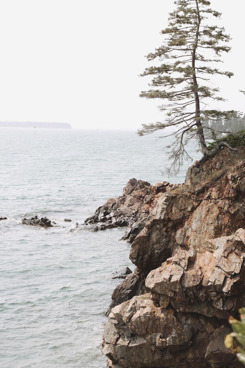 mid coast maine guide-25.jpg