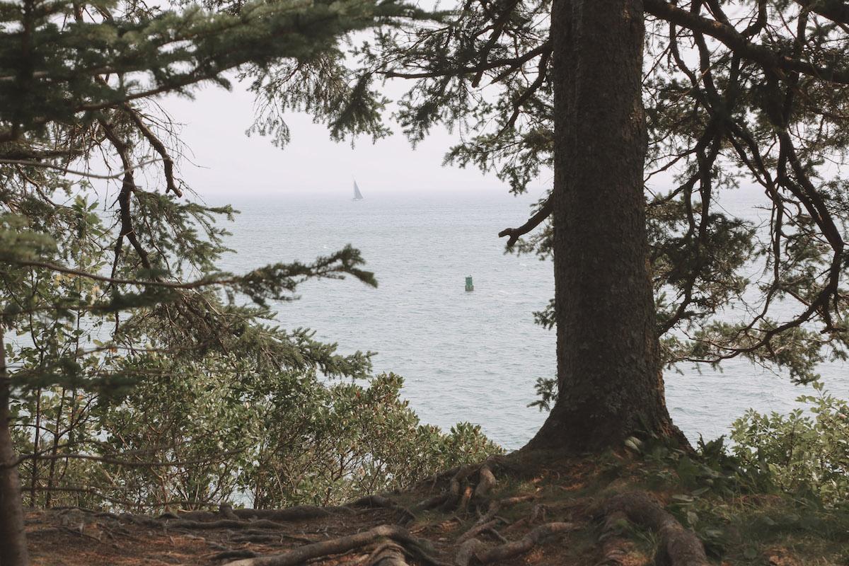 mid coast maine guide-30.jpg