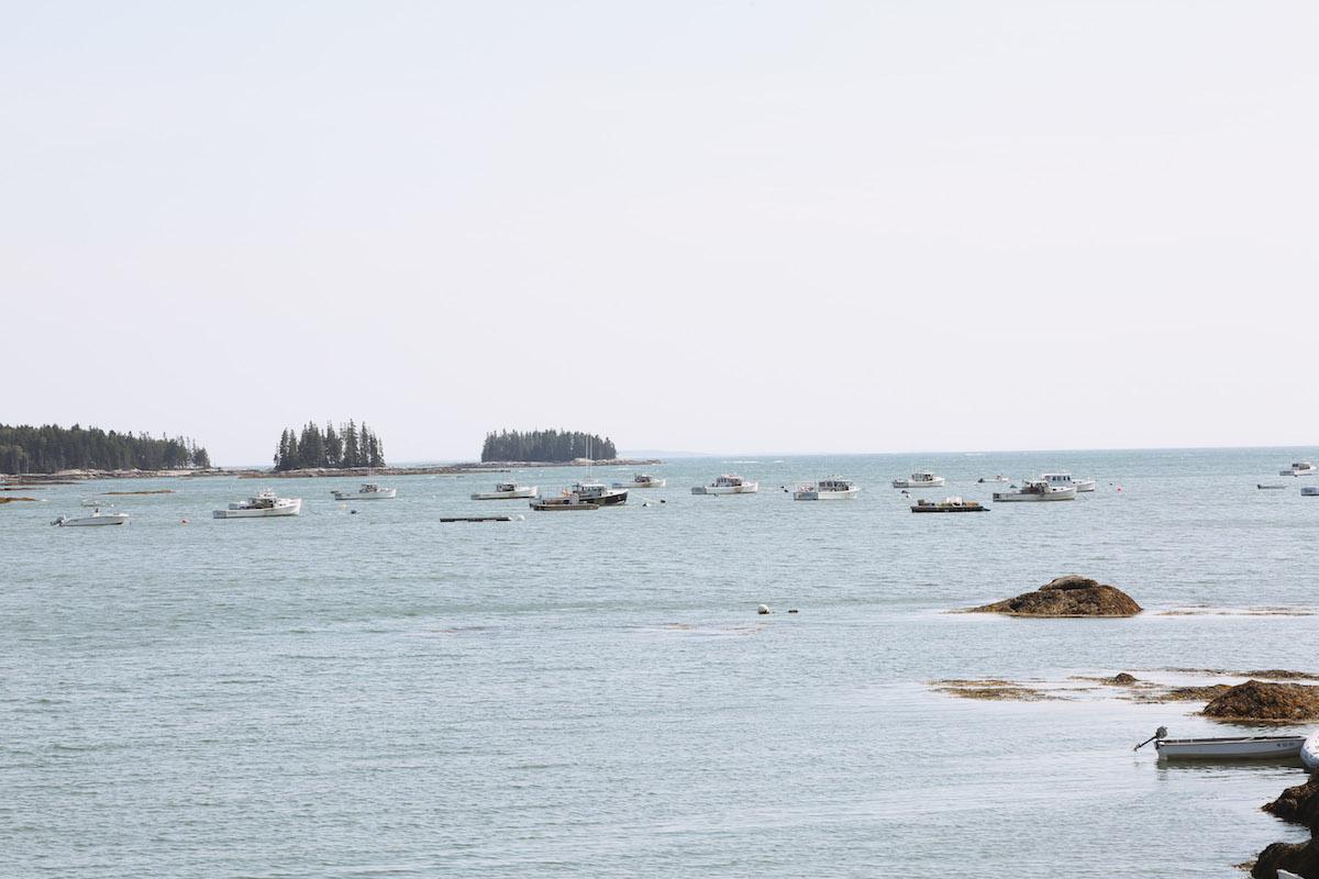 mid coast maine guide-9.jpg