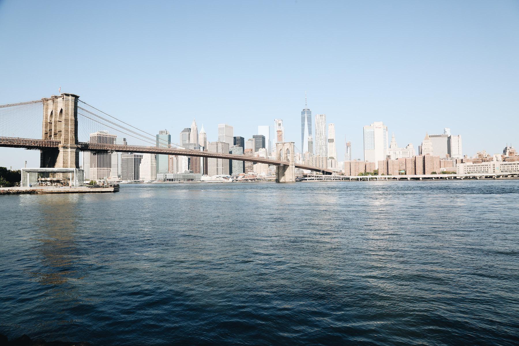 The Best Skyline Views - (Brooklyn Bridge Park, Brooklyn Heights + Dumbo)