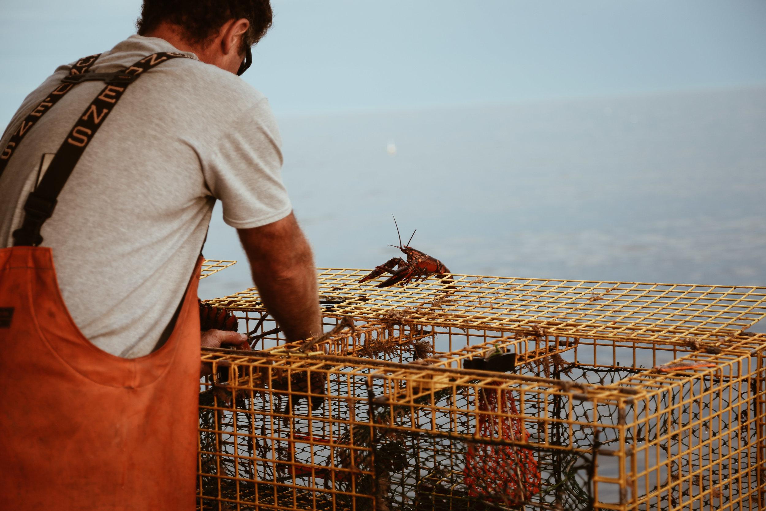 lobster boat-41.jpg