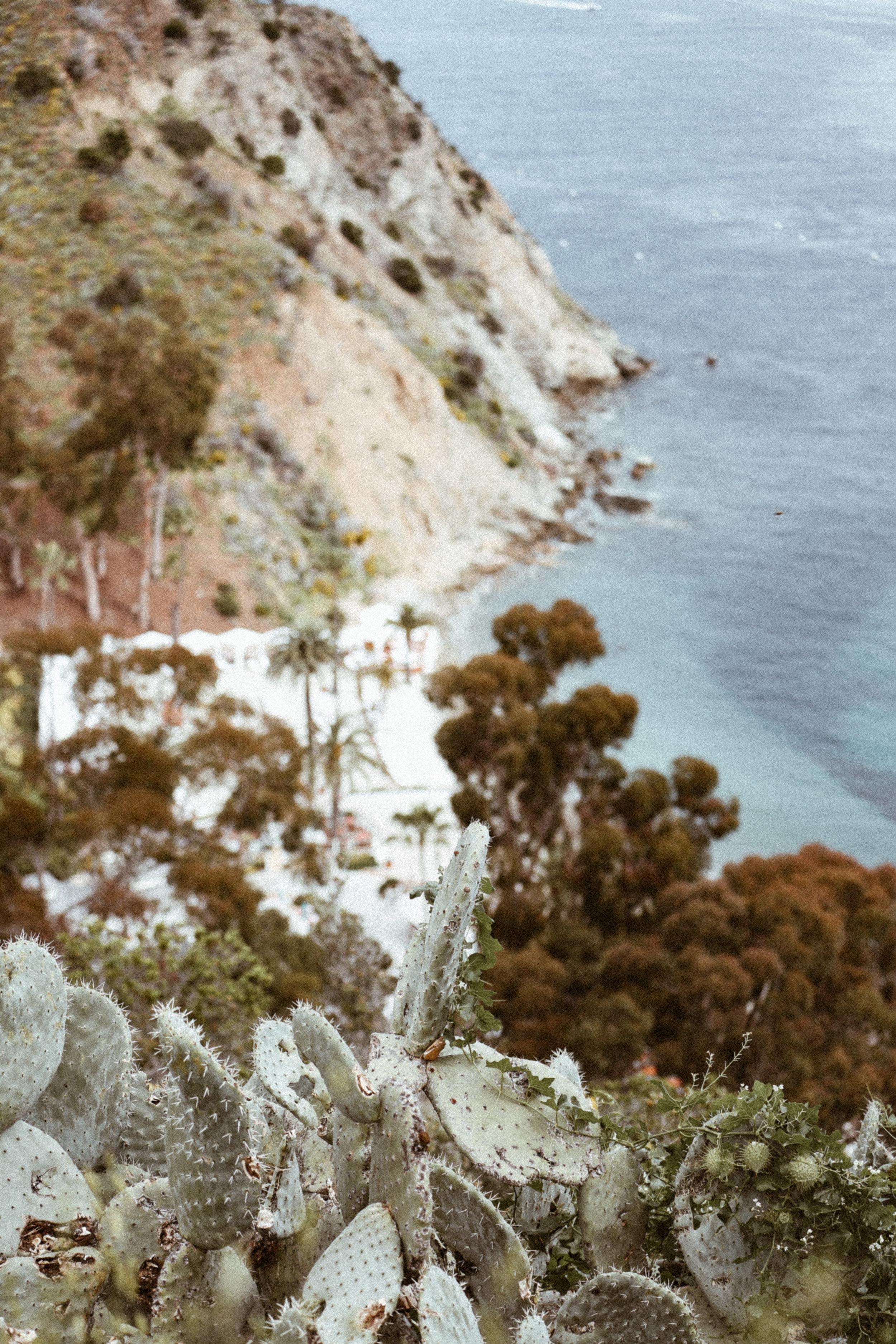 Catalina final-26.jpg