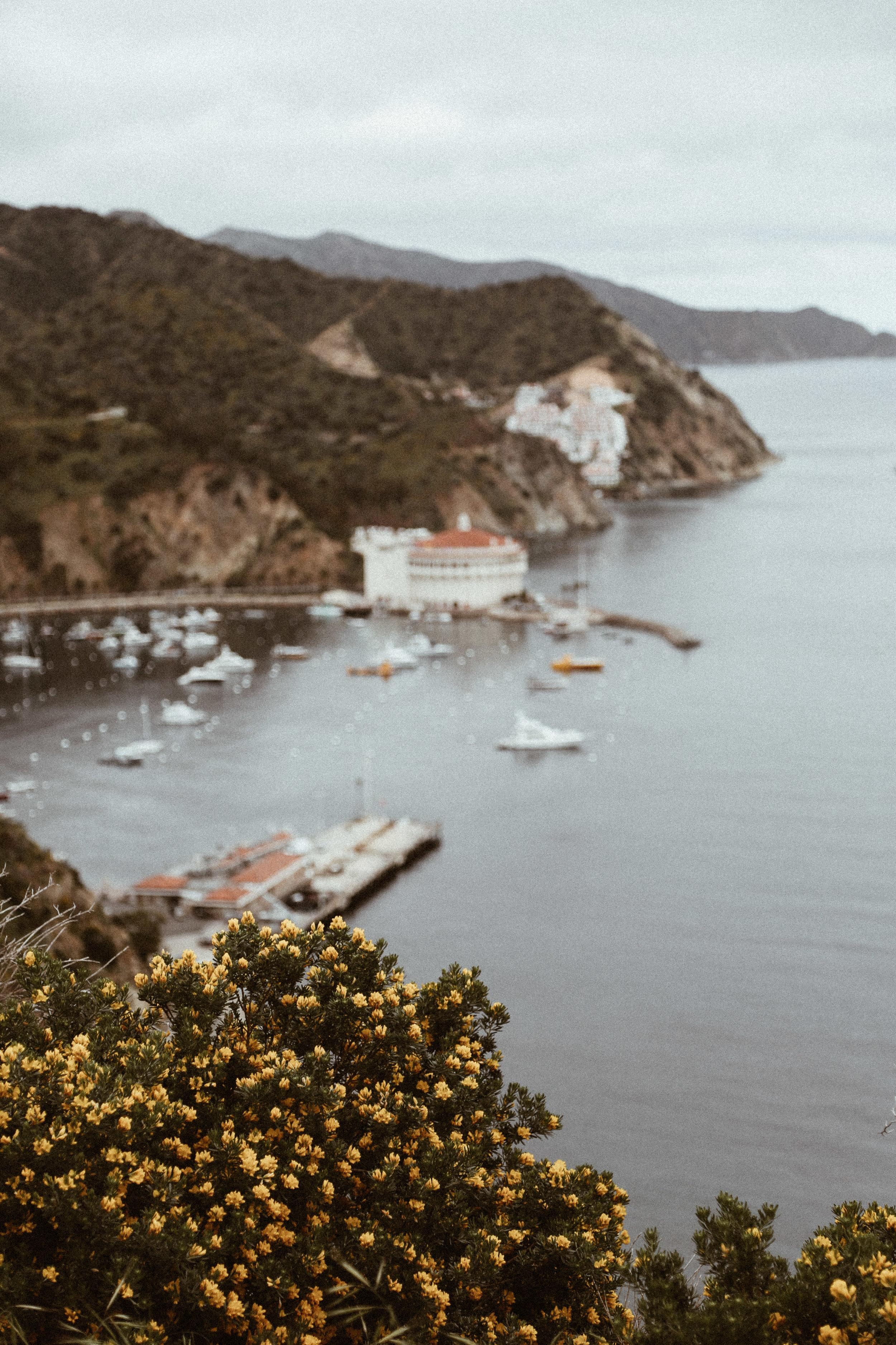 Catalina final-20.jpg