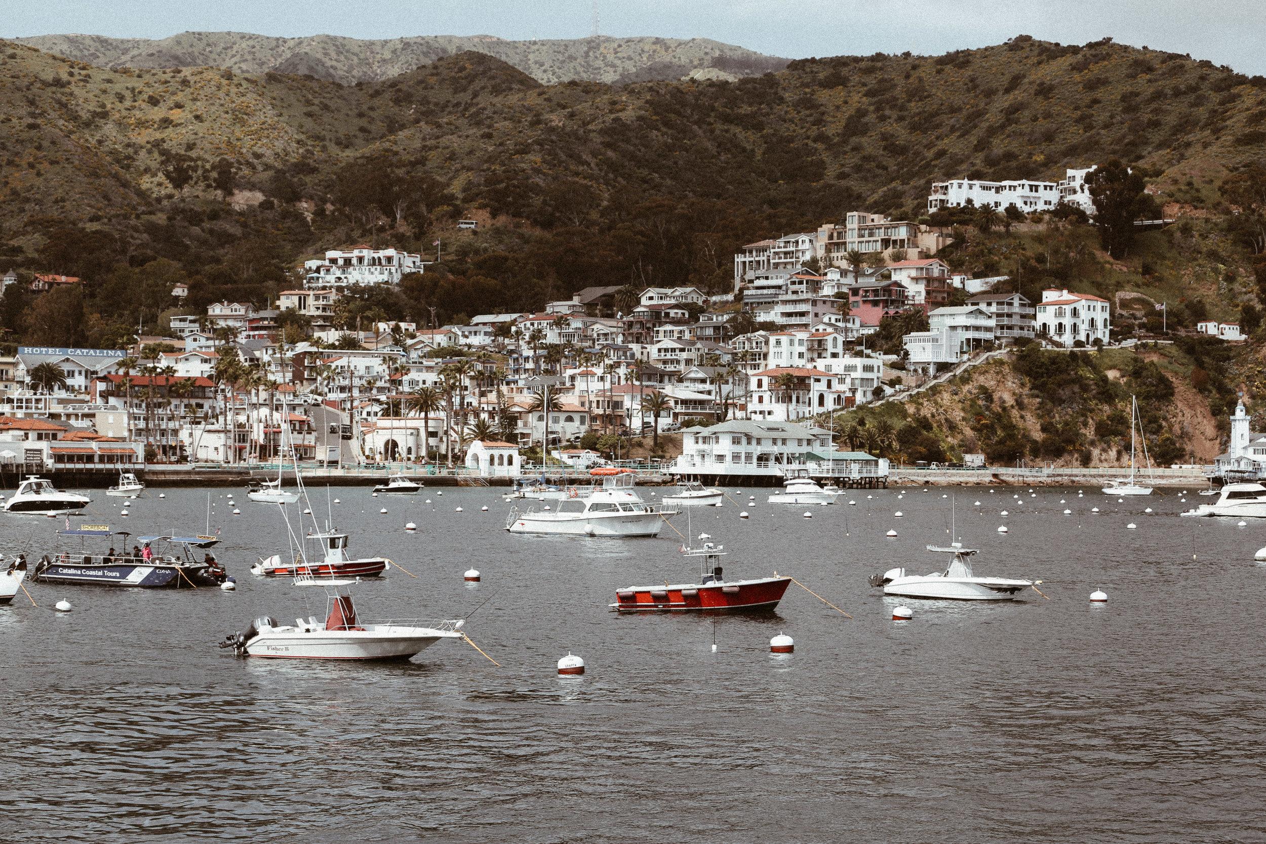 Catalina final-6.jpg