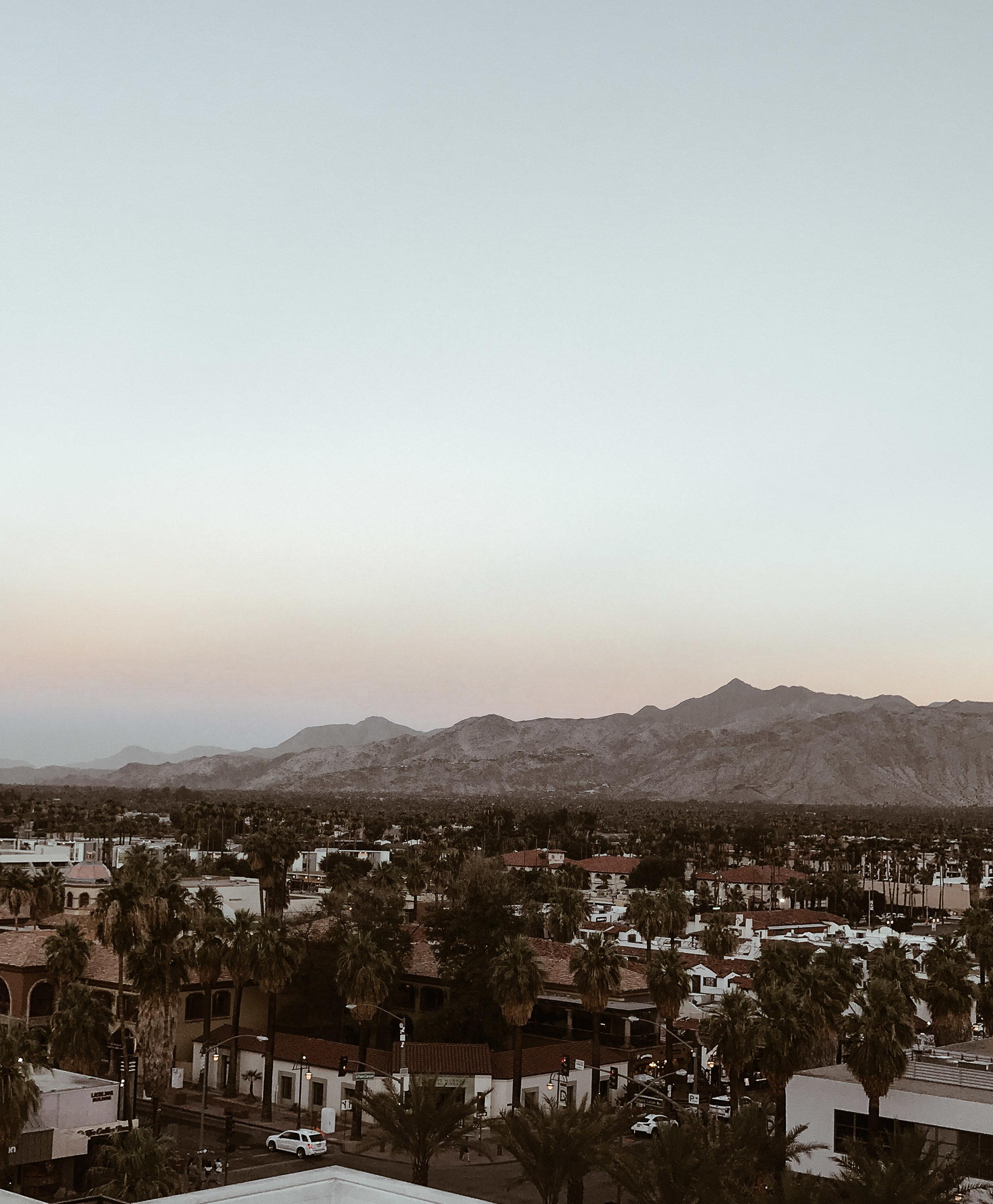 Kimpton Rowan Palm Springs-5.jpg
