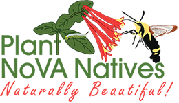 The logo features Coral Honeysuckle,  Lonicera sempervirens  and a Clearwing Hummingbird Moth,  Hemaris diffinis.