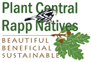 Plant Central Rappahannock Natives:  Regional campaign and guide for counties of Caroline, King George, Spotsylvania, and Stafford and City of Fredericksburg