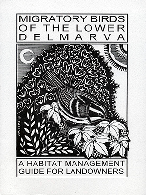 Publications---cover-of-Migratory-Birds-of-Lower-Delmarva.png