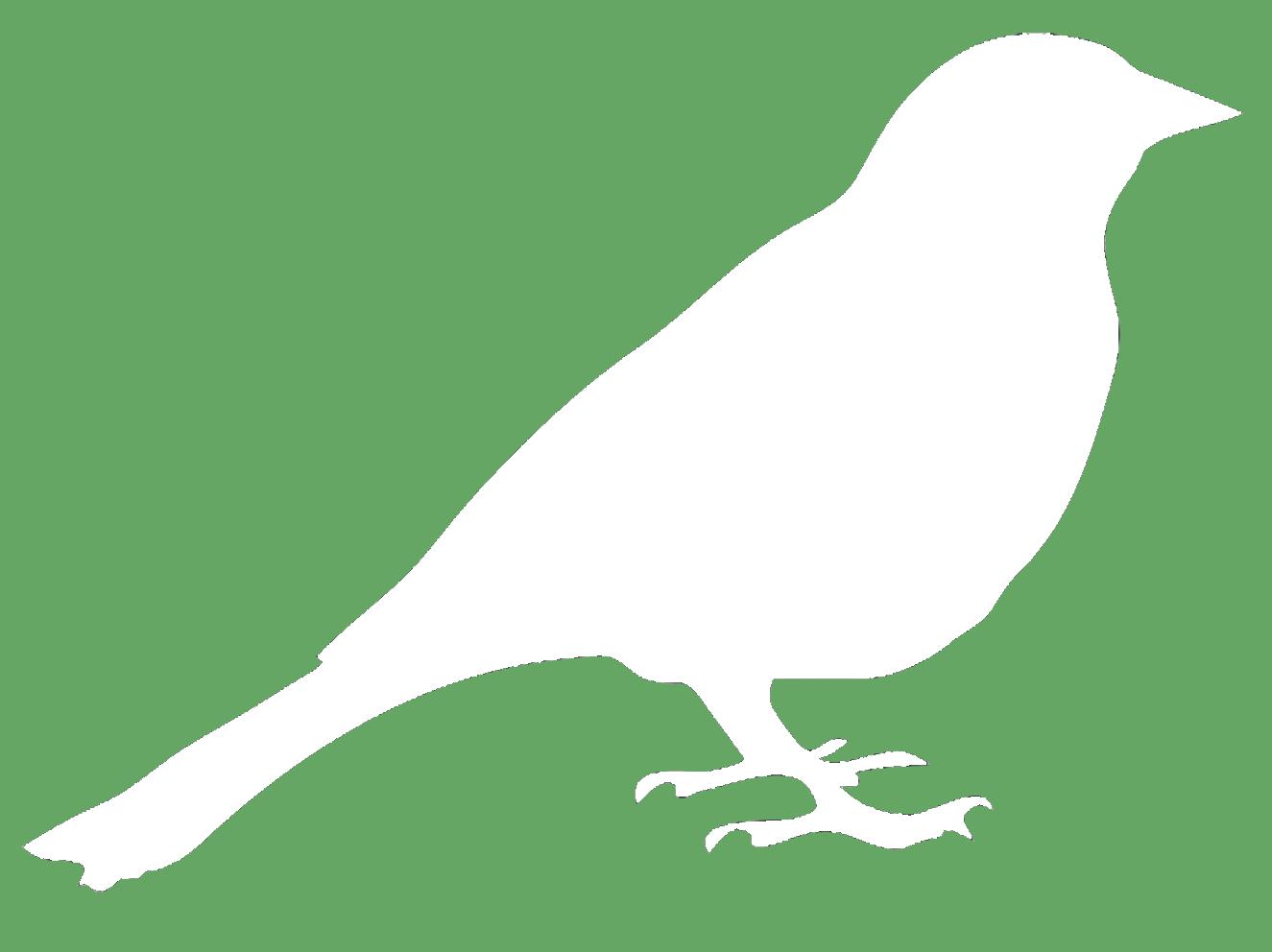 bird-symbol.png
