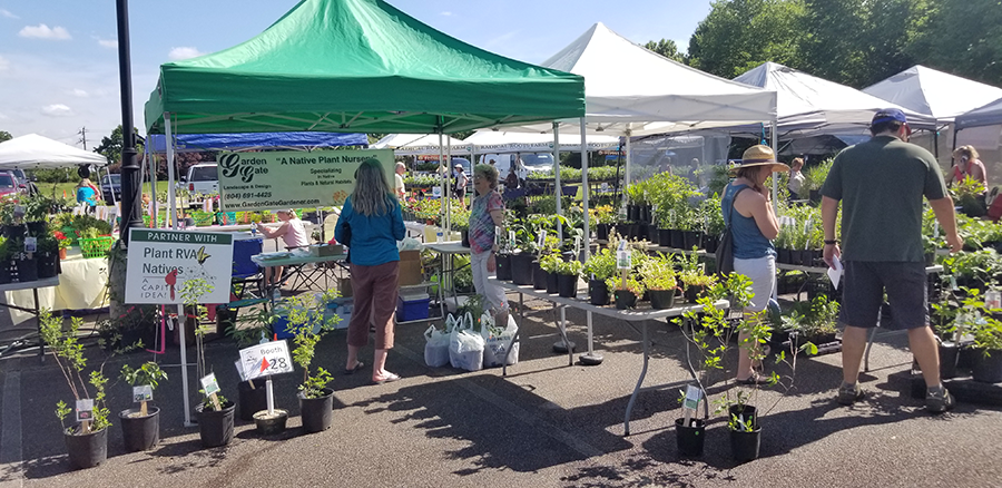 Lewis Ginter - Spring PlantFest. Thanks to our partner, the VDOT Pollinator Habitat Program for connecting with the day's vendors to partner with the campaign!