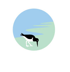 Virginia-CZM-logo---block-format--transparent---white-text---Illustrator-EPS.png