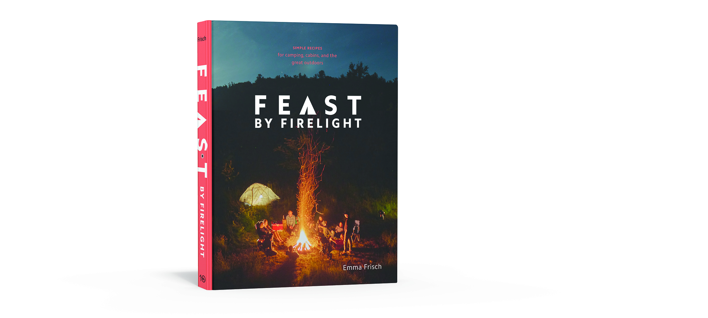 3d Book Cover_Feast by Firelight small.jpg