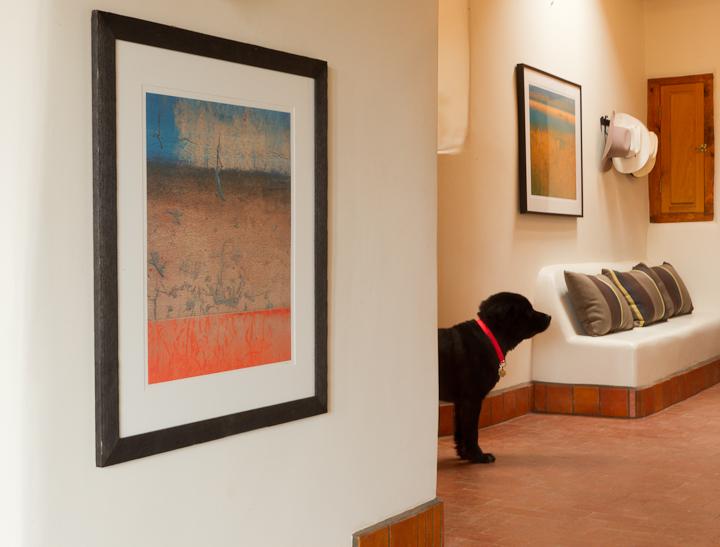 Rob Lang:King Residence Santa Fe.jpeg