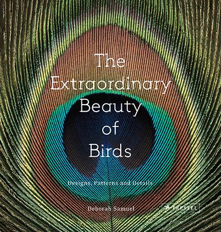 Extraordinary Beauty (email#1).jpg