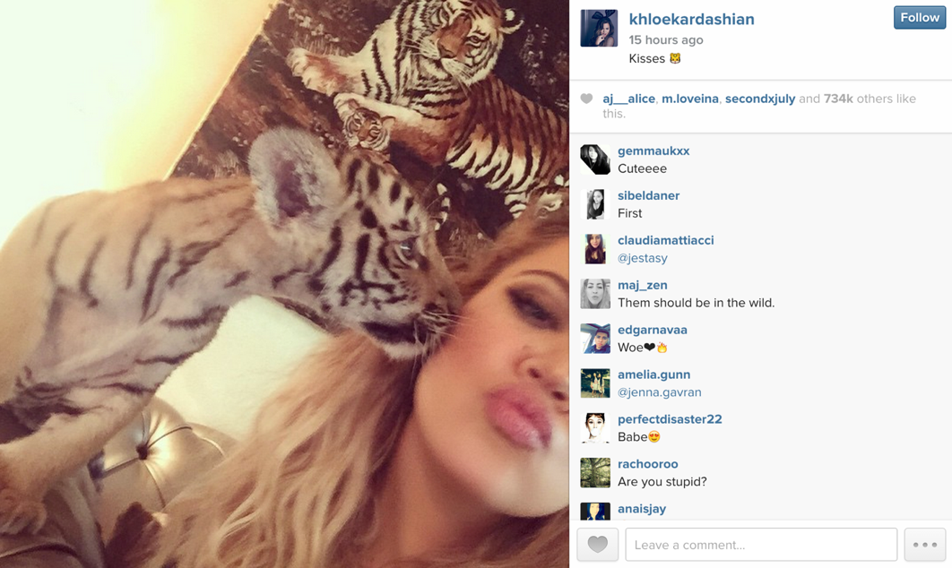 A post by Khloe Kardashian, happily posing with a baby tiger