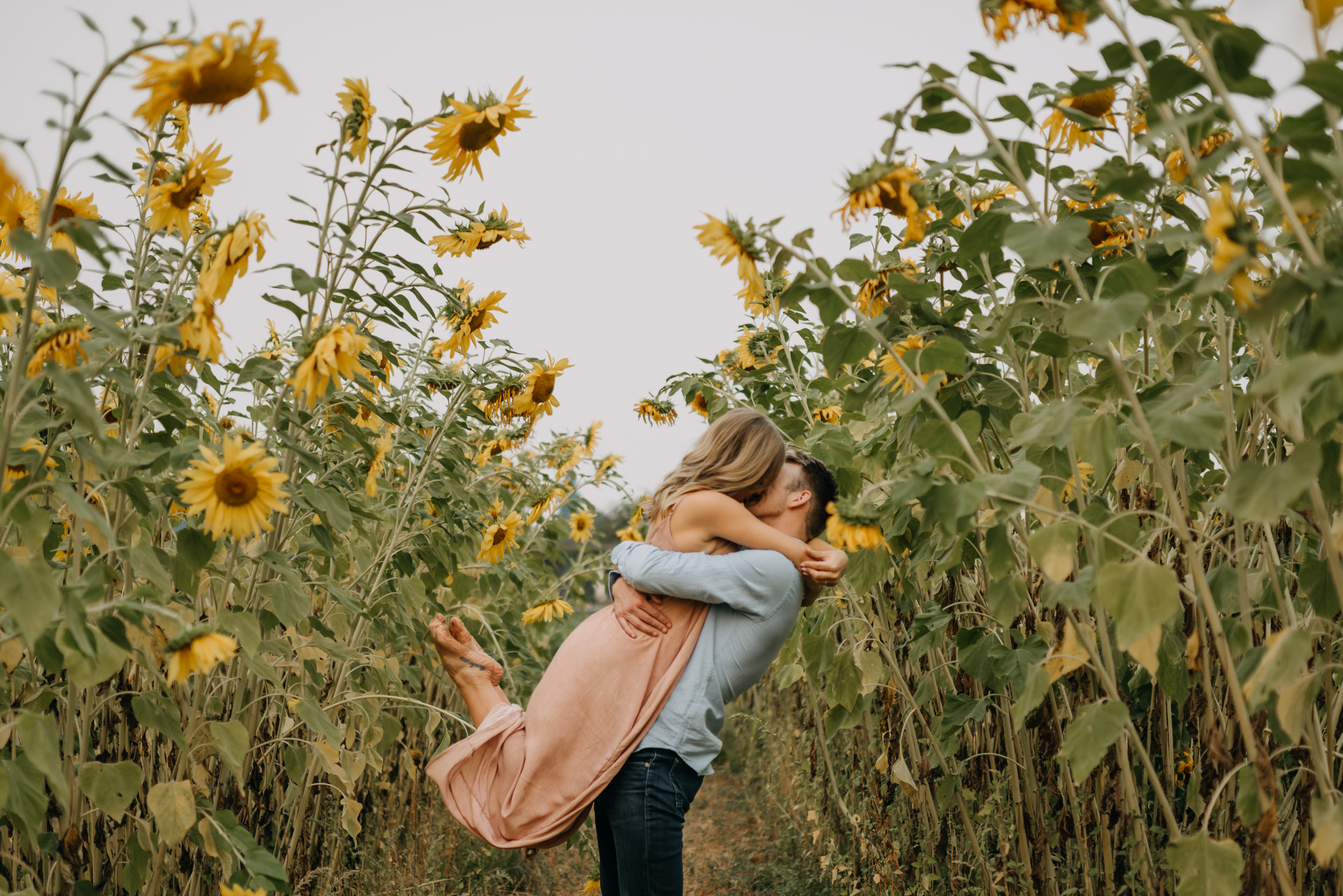 Sauvie-Island-Oregon-Sunflower-Portland-Engagement-3899.jpg