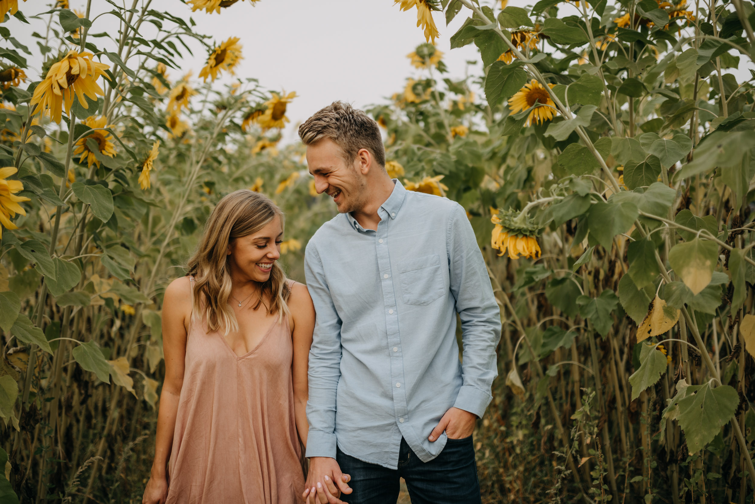 Sauvie-Island-Oregon-Sunflower-Portland-Engagement-3943.jpg