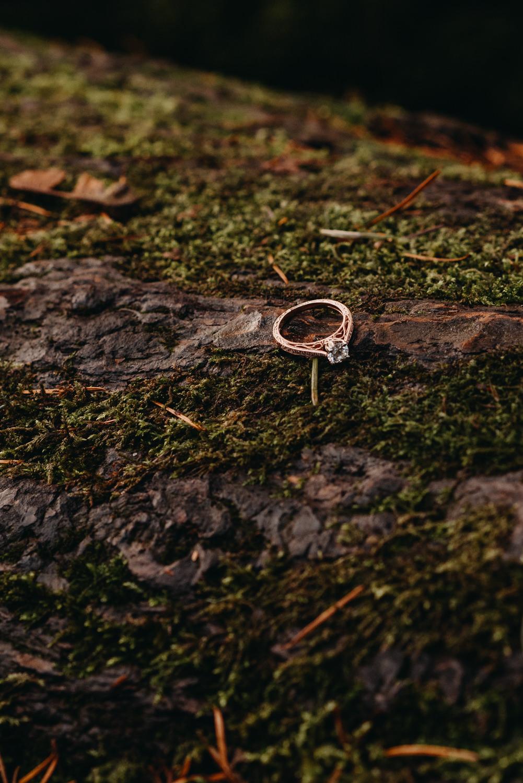 Engagement-portland-session-federico-hoyt-arborteum-trees-39.jpg