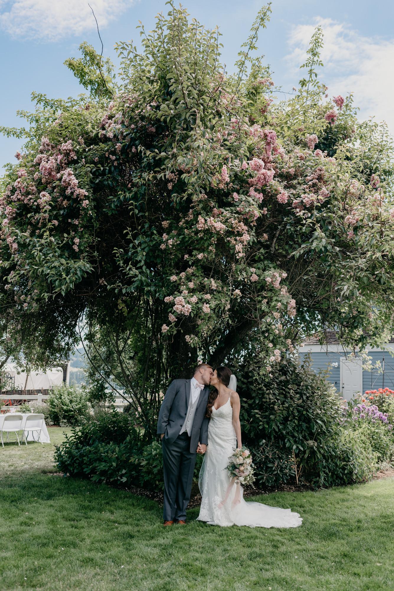 85-lake-oswego-wedding-portland-couple-rose-tree.jpg