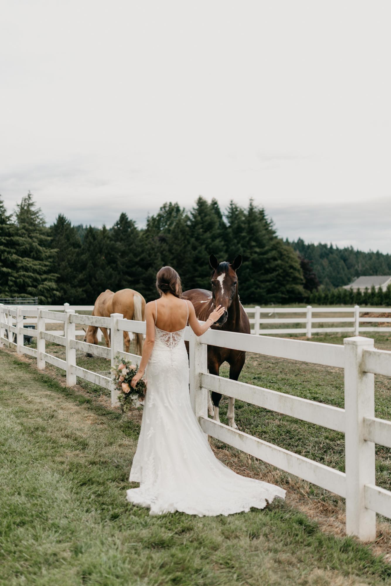 188-barn-kestrel-portland-northwest-horse-sunset-wedding.jpg